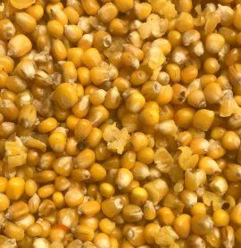 Prepared Maize